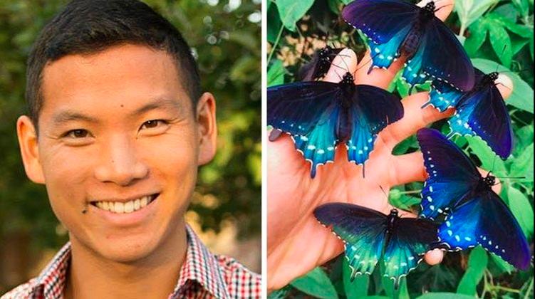 El biólogo que repobló una rara especie de mariposas en ¡su propio patio trasero!