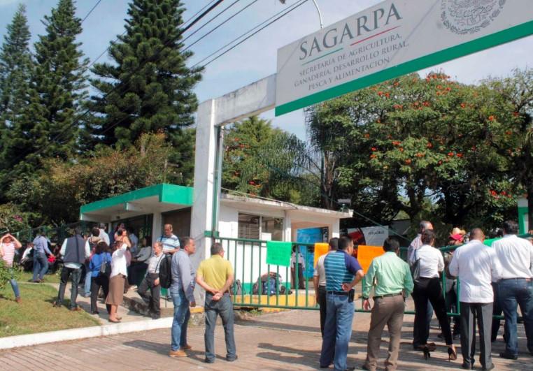 """Investigación revela segunda gran """"Estafa Maestra"""" ahora en Sagarpa"""