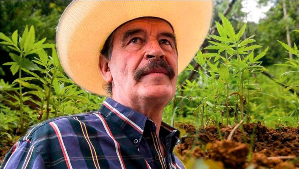 Usuarios recuerdan a Vicente Fox como el presidente marihuano de México