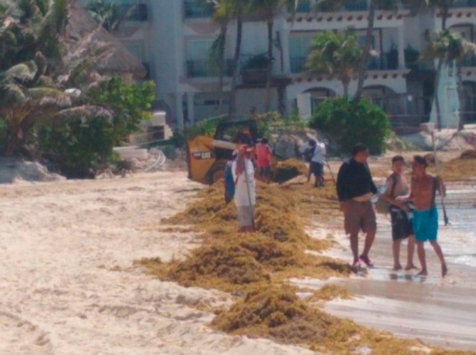 Contingencia sanitaria y ahora sargazo en Playa del Carmen