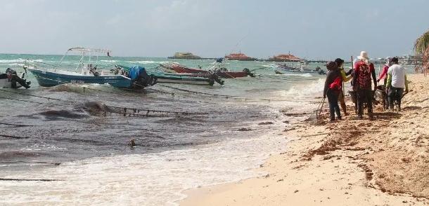 Estiman que termine pronto en recale de sargazo en Playa del Carmen