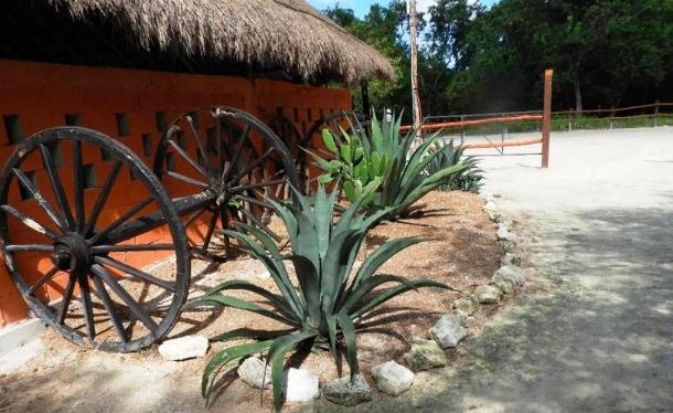 Tumban proyecto hotelero en la Riviera Maya por construir sin permiso ambiental