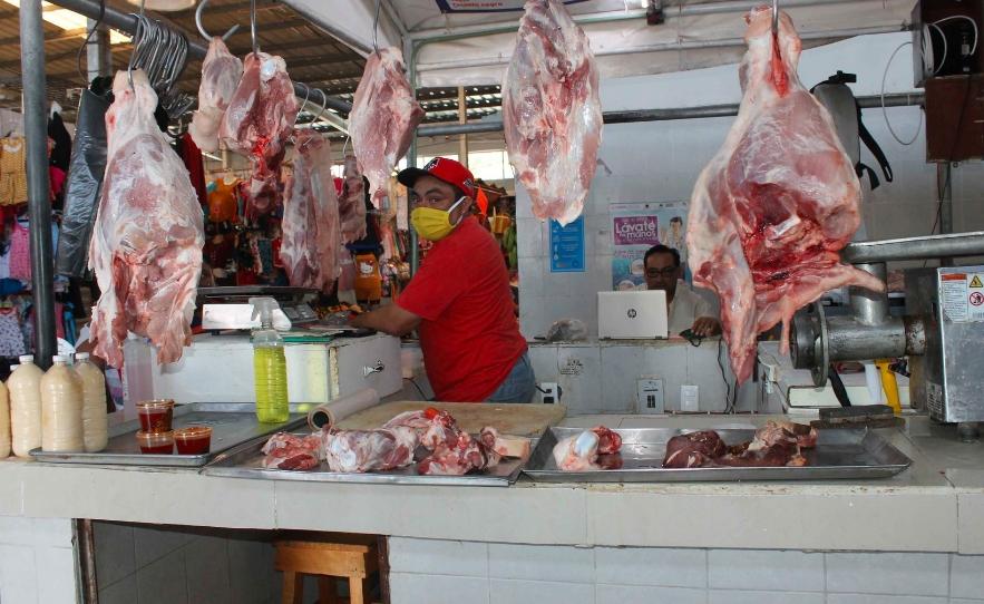 Chetumal: Continúan problemas en rastro para matanza de cerdos