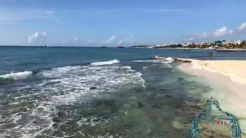 Se Observa Alto Oleaje en el Muelle de Playa del Carmen debido al Frente Frío No 11