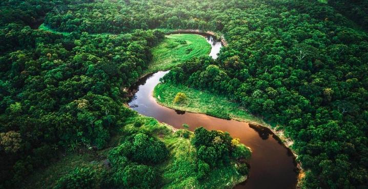 Amazonas podría morir en 2064, afirma científico