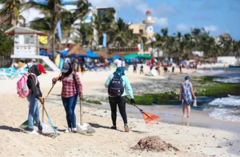 En marcha, plan integral de manejo de sargazo en Playa del Carmen
