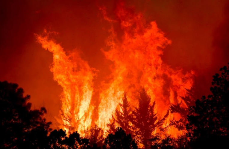 Incendio forestal en límites de Coahuila y Nuevo León obliga a desalojar al menos a 400 personas