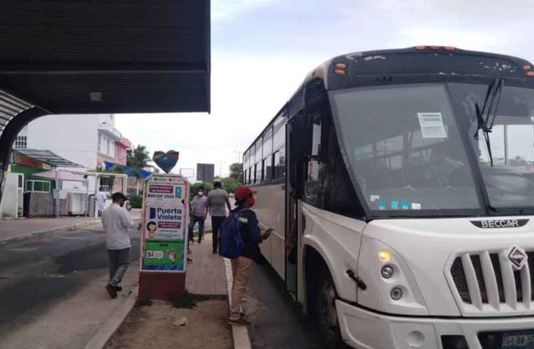 Playa del Carmen: Sancionan a más de 40 transportistas por incumplir medidas sanitarias