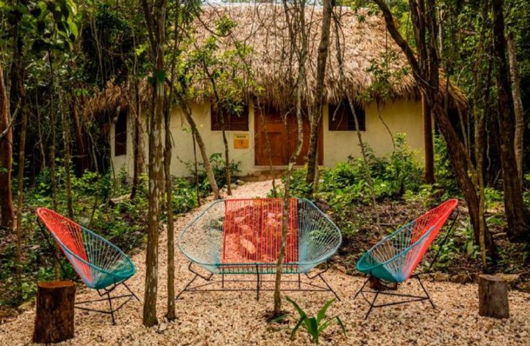 Alltournative anuncia campamento de verano: NativeCamp Kambul