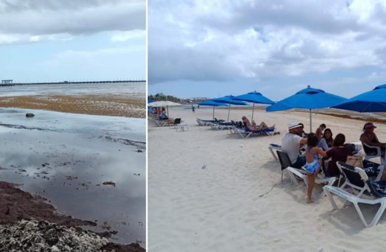 'Sí hay gente, pero ve chocolate el mar y va para fuera', lamentan prestadores de servicios de Playa del Carmen